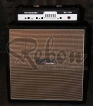 Electric Bass Amp